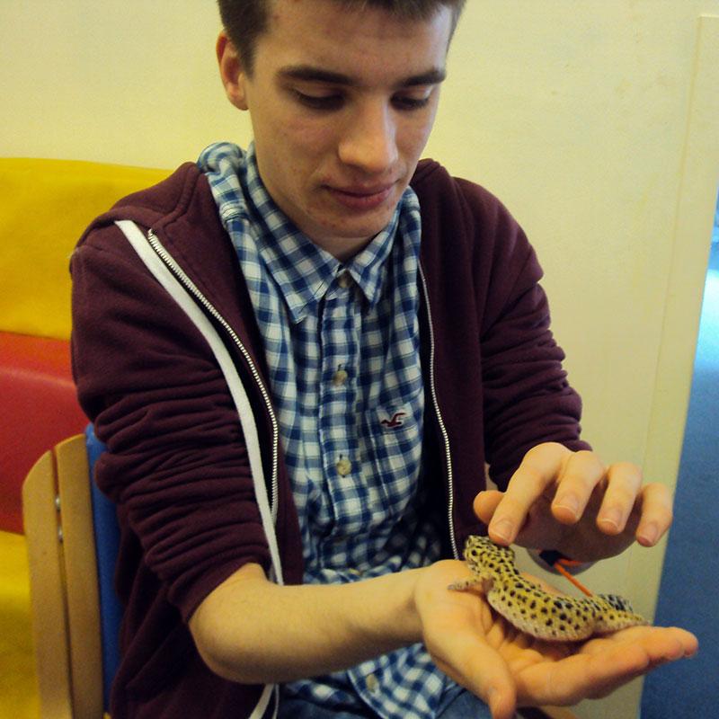 reptile-visit-chiltern-centre-02