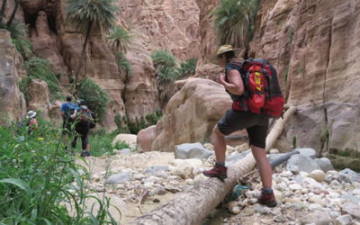 Trek to Petra